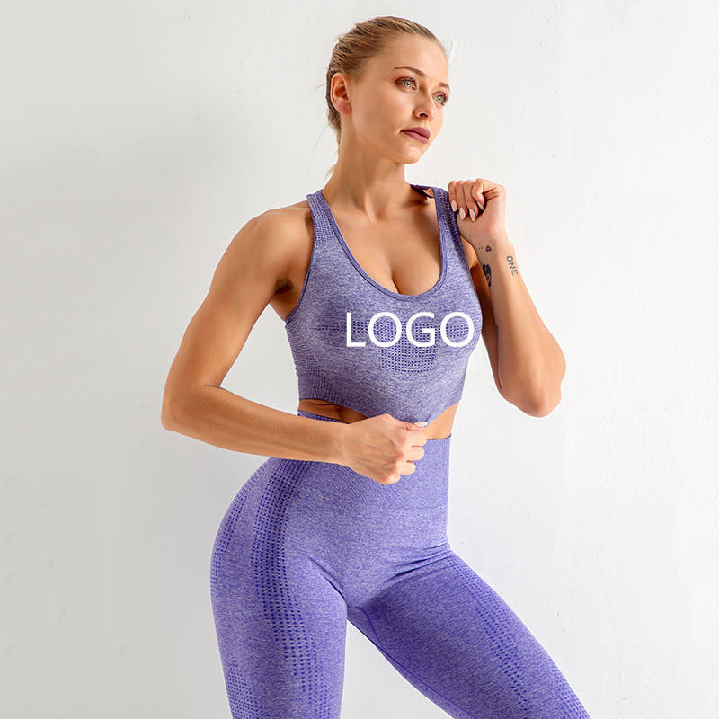 EU/US Size Stretch Wholesale Women Custom Logo Gym Wear Seamless Sportswear Yoga Wear Gym Workout Clothing Fitness set