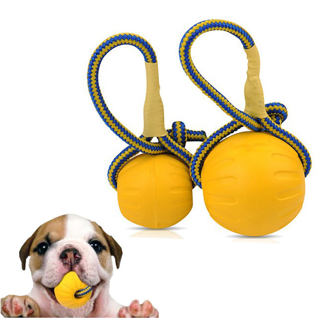 China Durable pet dog toy unbreakable Floating EVA Supplies Rope Ball float dog toy