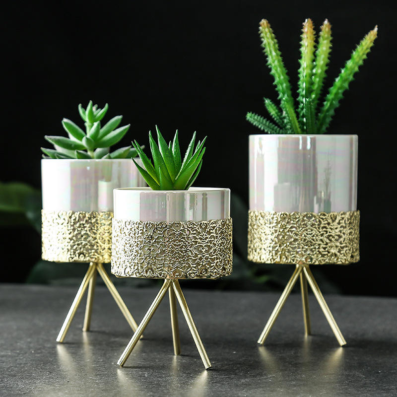 Ins gold-plated wrought iron flower pot vase Simple iron frame multi-meat flower pot Nordic hydroponic flower pot