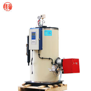 Yuji LSS garment industry gas steam generator sauna