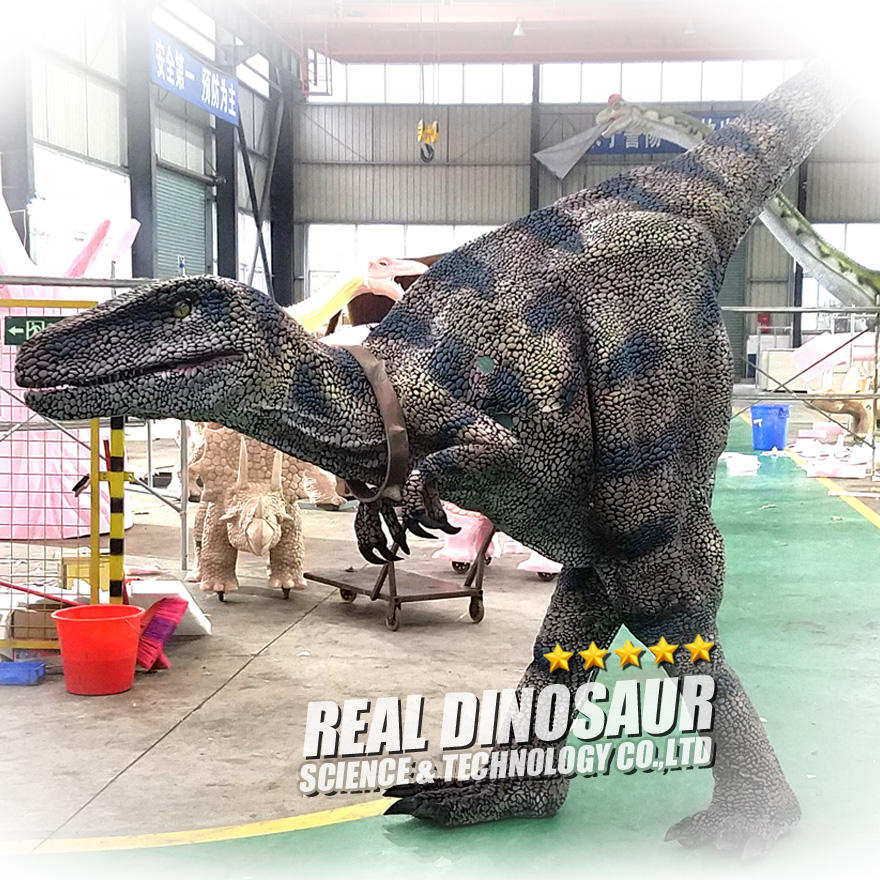 Dinosaur World Park Realistic Walking Dinosaur Costume Velociraptors for Sale