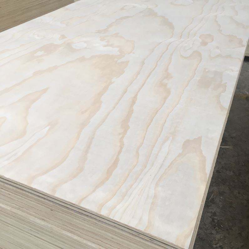 Best price larch plywood for furniture/construction/package/decoration