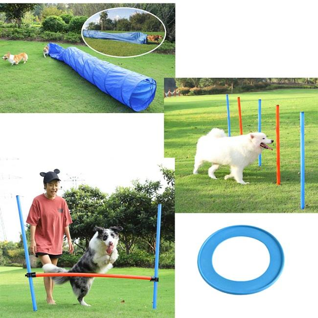 Petstar Pet Speed and Agility Training Set, Dog Agility Perfamence Training Equipment