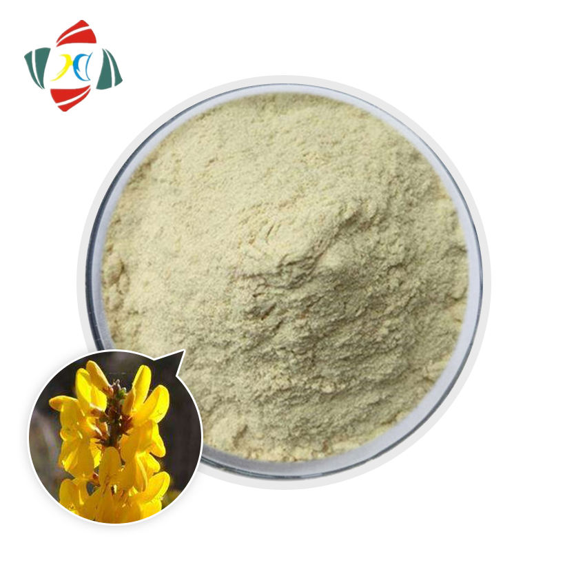 WuHan HHD Factory supply Organic Pure genista tinctoria extract genistein Genista tinctoria Linn