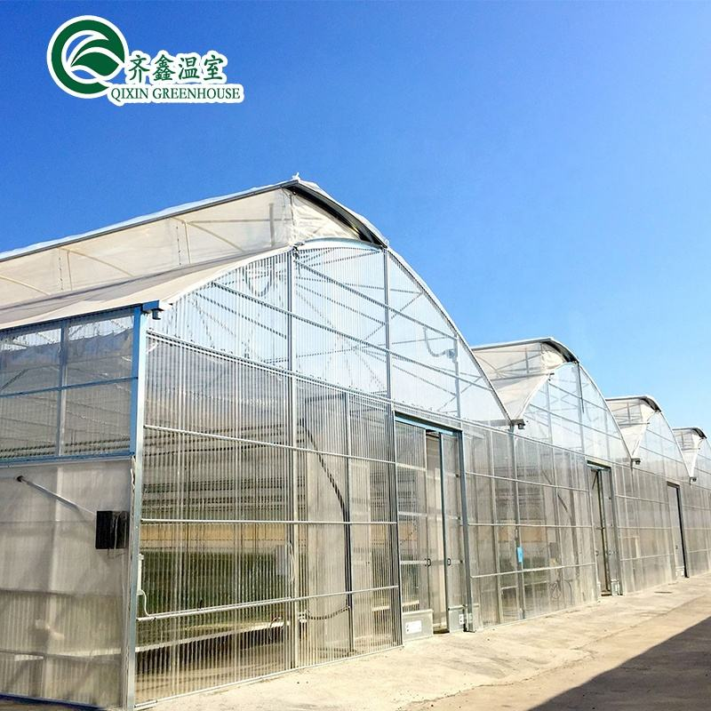 hydroponics greenhouse with climate control
