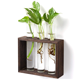 Home Office Decoration Tabletop Terrarium for Propagating Hydroponics Plants Plant Stand