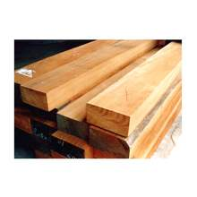 Hot Selling Good Quality Sturdy Kapur Timber Wood from Trusted Supplier