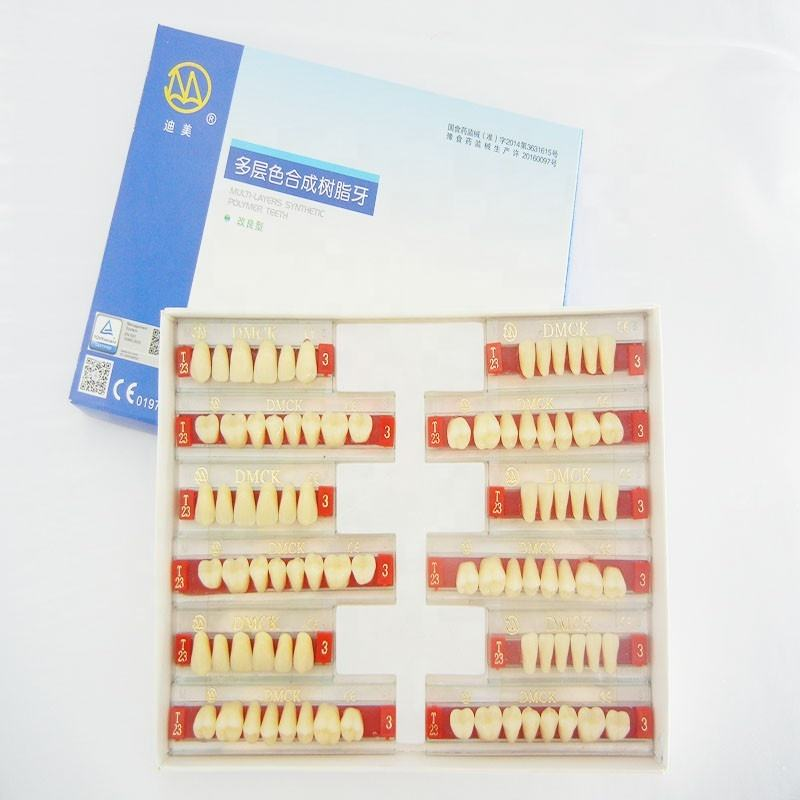 CE Supplies Two Layer Dental Resin False Teeth