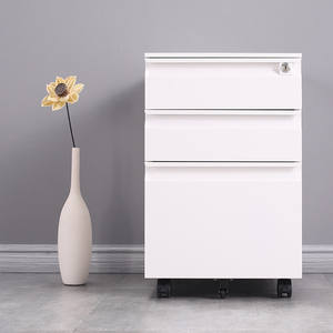 Morden style 2 door garage metal filing cabinets in office