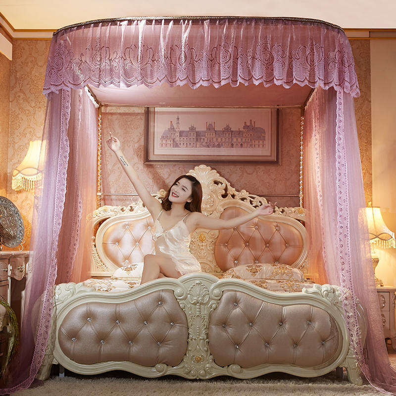 Romantic luxury Lace U type Palace style Guide rail mosquito net three open door telescopic mosquito net
