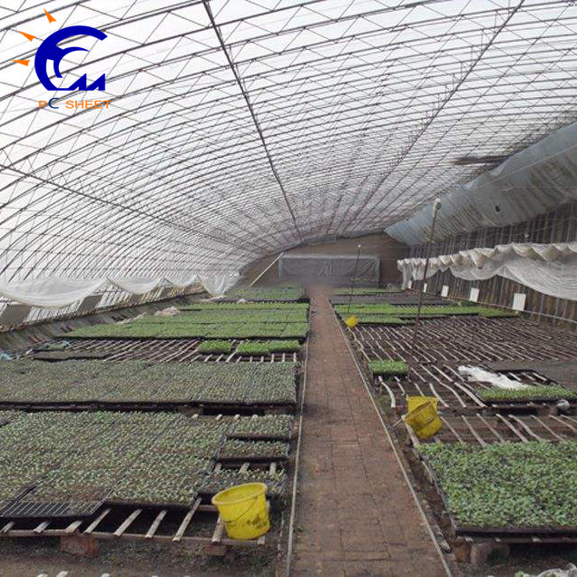 Polycarbonate Film Solar Tomato Greenhouse