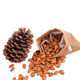 Nuts Edible 100%Pure Natural Wild Pine Nuts Edible Nuts