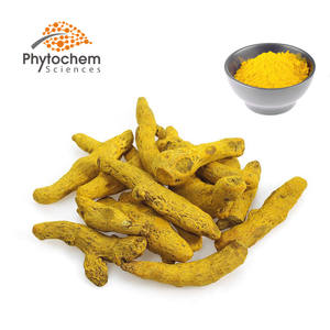 body health curcuma longa extract turmeric standardized 95 curcumin