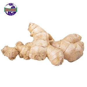Hot sale farm planting high-quality production area ginger price in china