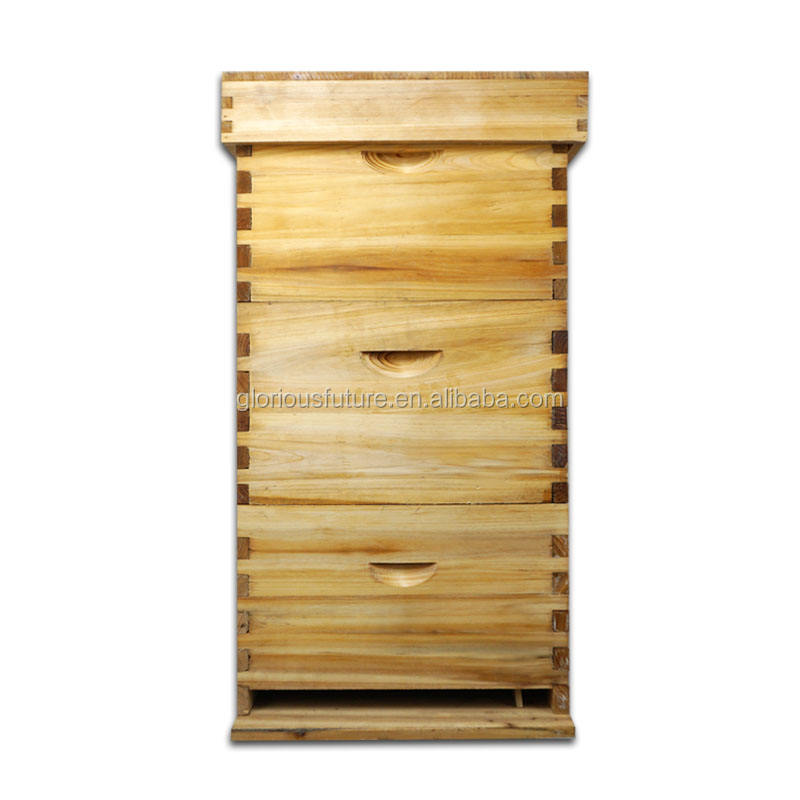China Factory Sale 3 Layers Langstroth Beehive Price