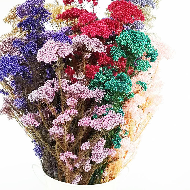 Sumflora Real Touch Rice Flower Preserved Millet Flower Bouquets Fresh Natural Stem Eternal Home Decoration Flow