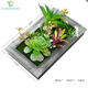 Fashion Design Artificial Wall Hanging Plant Succulent Plant 3d Photo Frame