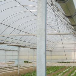 Agriculture plastic glass garden glass pipe hoop house agricultural cooling pads home greenhouse multispan foe sale