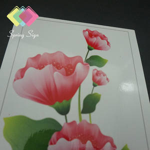 Sintra PVC Voor Interieur Decoratie China PVC Foam Board