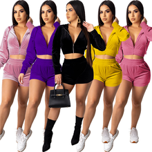 Hot Designer Ladies Suits 2 Piece Clothing  Warm Cozy Velvet Hoodies Tops Shorts  Casual Wear Tracksuit Two Piece Set For Women