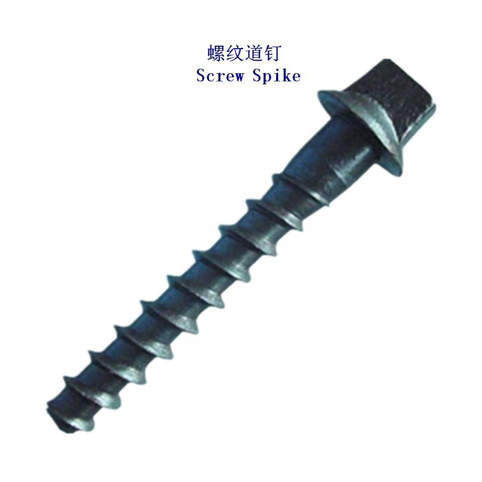 Rail Coach Screw Spike, Railway Screw Spike für Sleeper zur Schienen befestigung