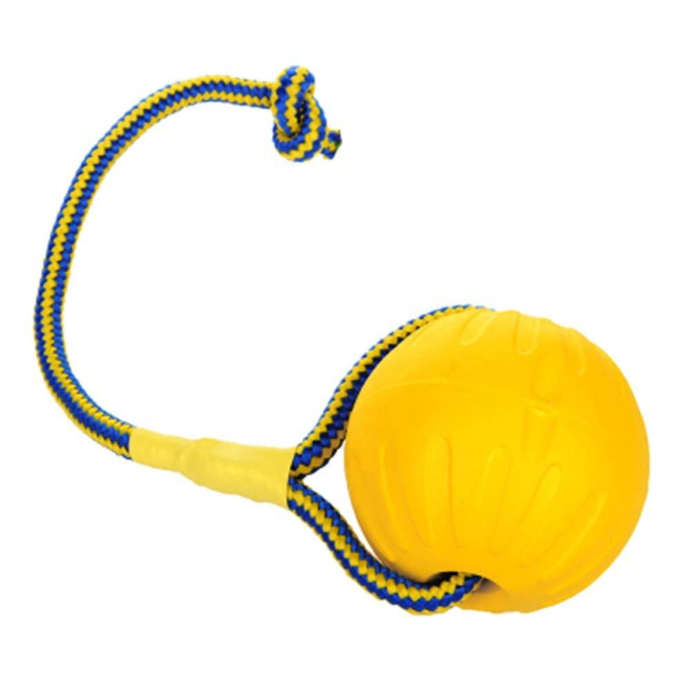 Natural EVA Floating Foam Ball on a Rope Dog Toy for Pet Training