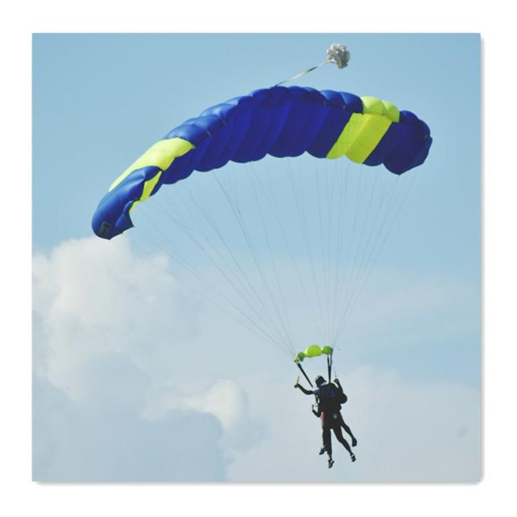 Paraglider Fabric 30D N6.6 Ripstop Fabric 100% Nylon fabric Coating For Parachute Paragliding