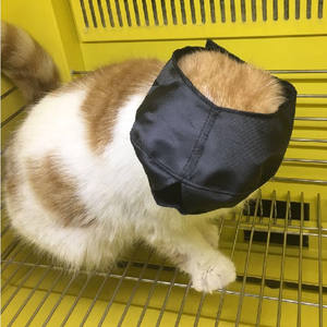 Wholesales Chewing Protector Breathable Cat Muzzle Anti Bitten for cats