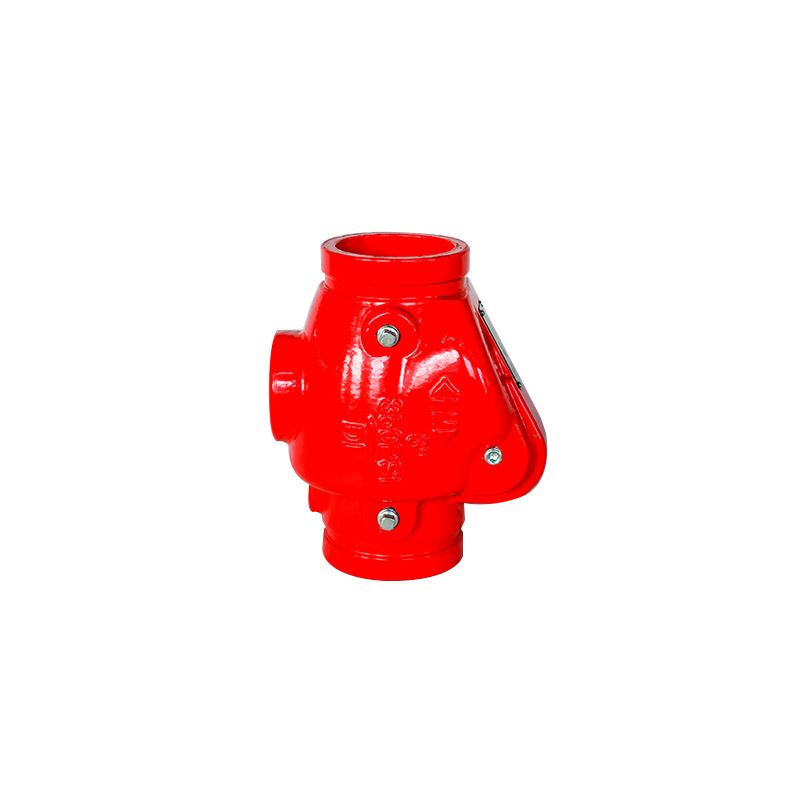 Graphic Customization Swing Check Valve 350PSI Grooved End FM Approved AWWA C606 Red Epoxy Coated High Pressure Ductile Iron