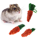 C&C 3pcs carrot toy for rabbit, hamster