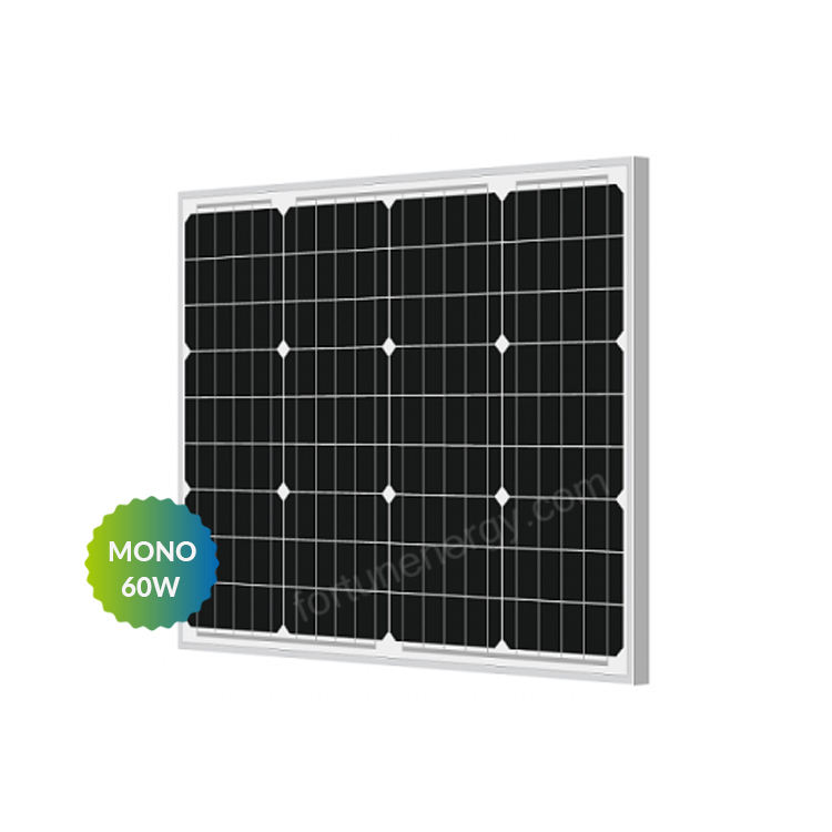 Factory Direct Home Use Solar PV Panel 60W 100W Paneles Solares