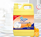 Hot Sale Kitchen Cleaning Chemicals Free Sample Kitchenware Oil Removal Dishwashing Liquid