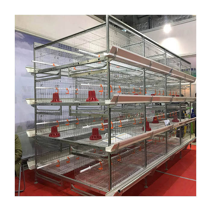 Good Price H Type Poultry Farm Equipment Meat Broiler Battery Chicken Cage for Sale