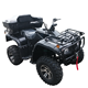 5000W Super Horsepower adult electric atv Four Wheeler ATV Farm Dedicated Vehicle Electric Mountain Bike with Trunk and Winch