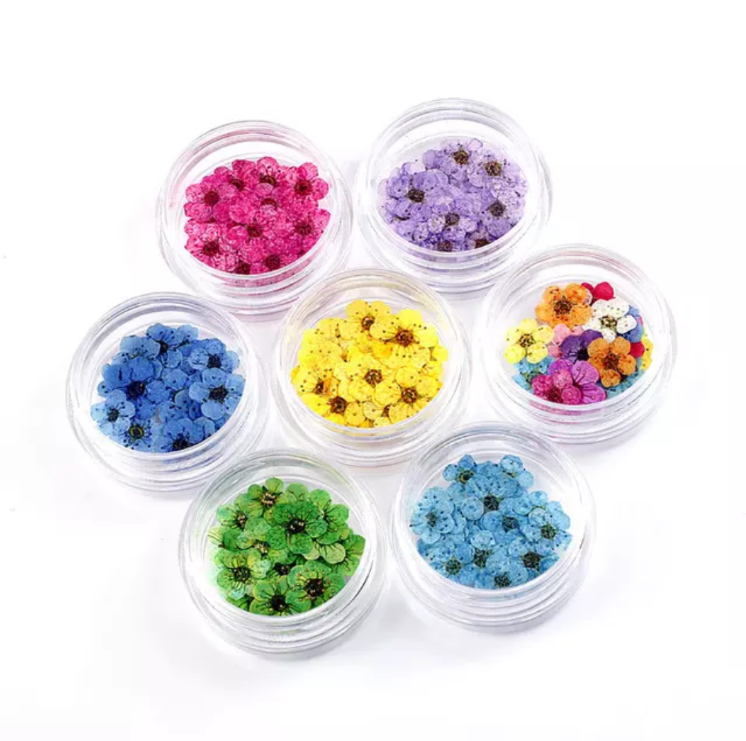 Instagram the most popular hand drop glue material preserved flower pressed flower for handicraft material DIY work