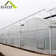 Eco Friendly Feature and hot galvanized steel Metal Frame Material hydroponic grow green house