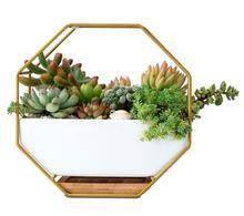ceramic wall hanging hexagonal flowerpot plant pots ceramic metal hanging baskets ceramic pots for plants for walls