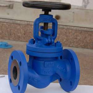 Export Worldwide Bellows Seal Globe Valve DN200