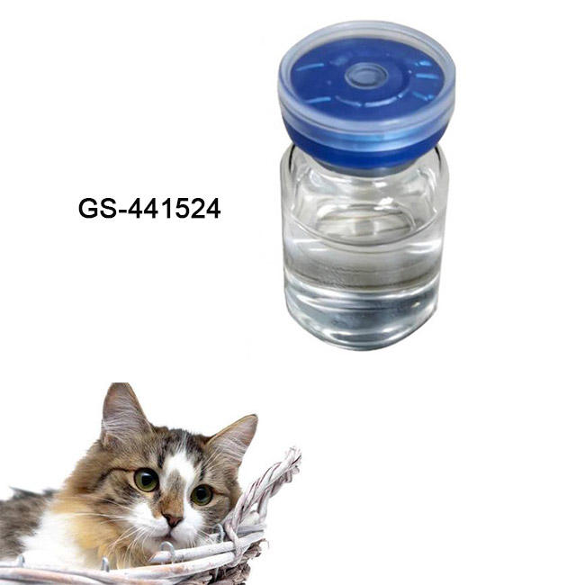 Injection Vaterinary Medicine Fip GS-441524 for cat fip/ fipv gs441