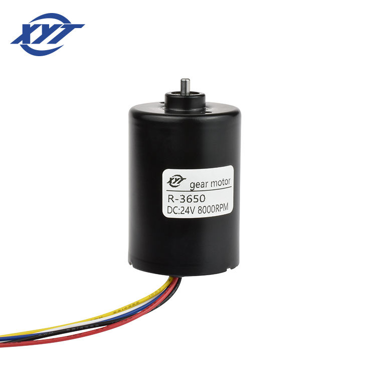 China high Torque Low Rpm Brushless 24v 12v Speed Specifications 24 Volt 12 Electric Micro Dc Motor