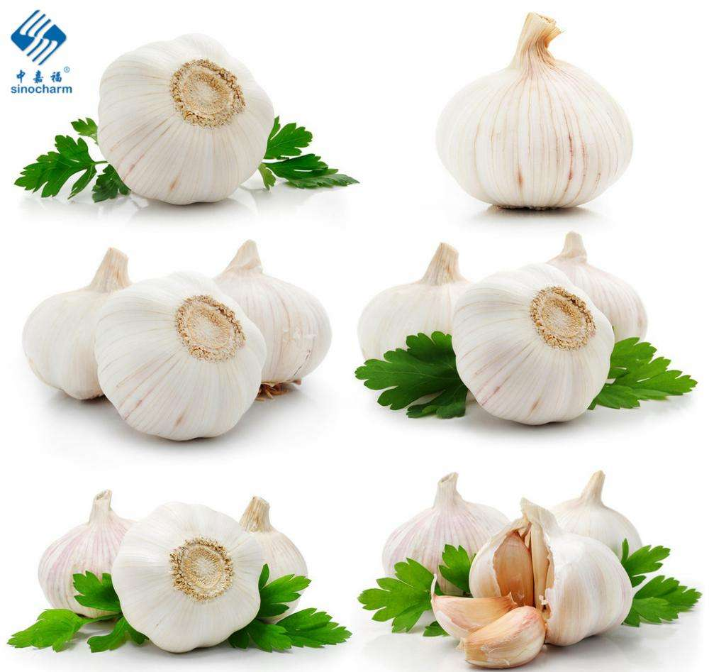 Pure White Fresh Garlic Chinese Garlic