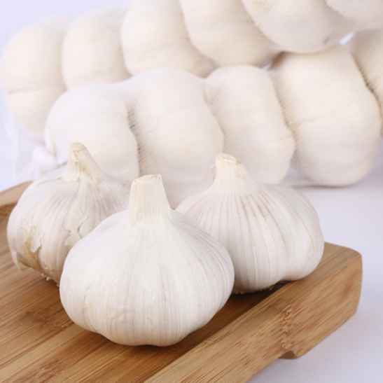 Wholesale China Fresh 4P Pure White Garlic