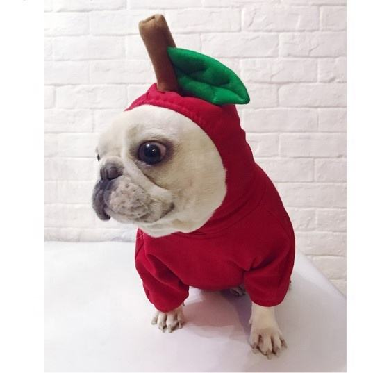 Amazon Hot Selling Pet dog Christmas apple pet Clothes