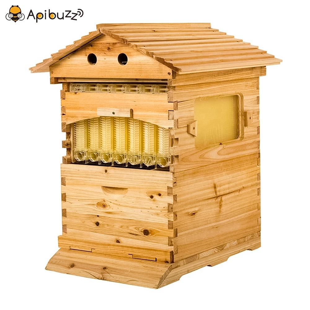 Chinese Wooden Automatic Self-Flowing Honey Bee Hive Apiculture Beekeeping Equipment Beekeeper Tool Beehive Supplies