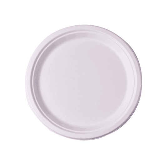 12 inch large disposable round bagasse paper plate