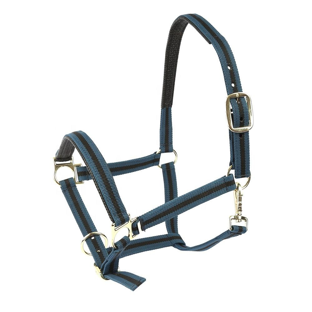 horse halter racing equestrian products