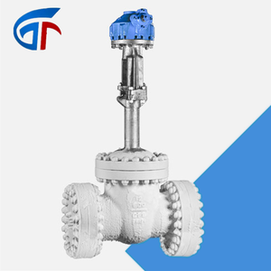 Cryogenic gate valves stainless steel