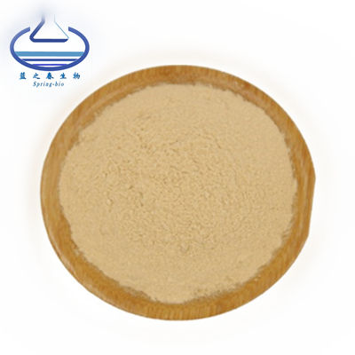 Best Price Sensitive Plant Mimosa Pudica Extract Powder
