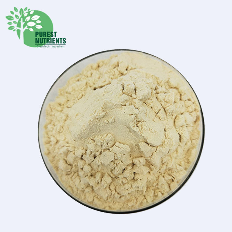 Supply Raw Whey Protein Isolate Powder 90% Protein