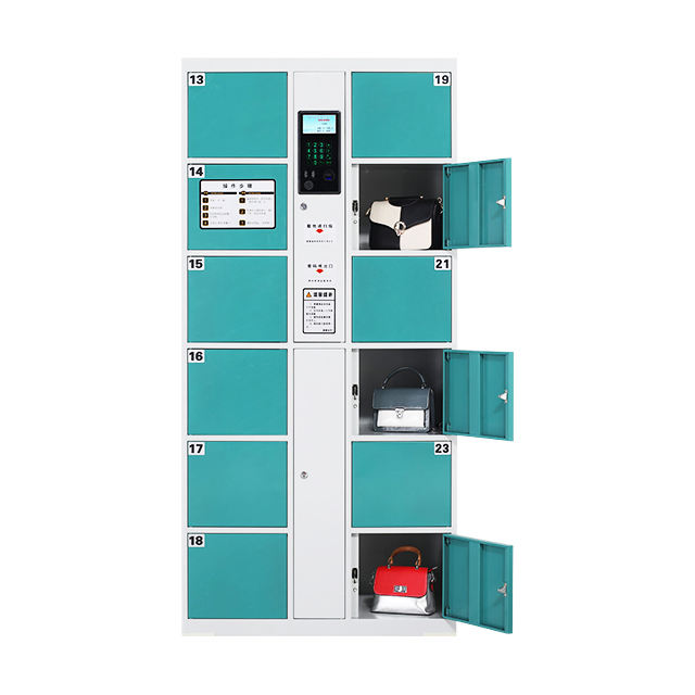 Blue Whale Self Pick up electronic smart cabinet parcel delivery locker for post